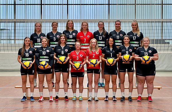 Dsc Dresden Volleyball Damen